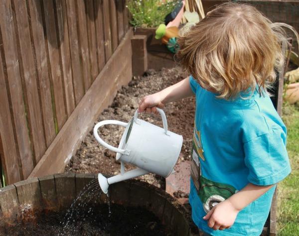 maxi watering