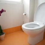 7 Practical Tips for Buying a New Toilet