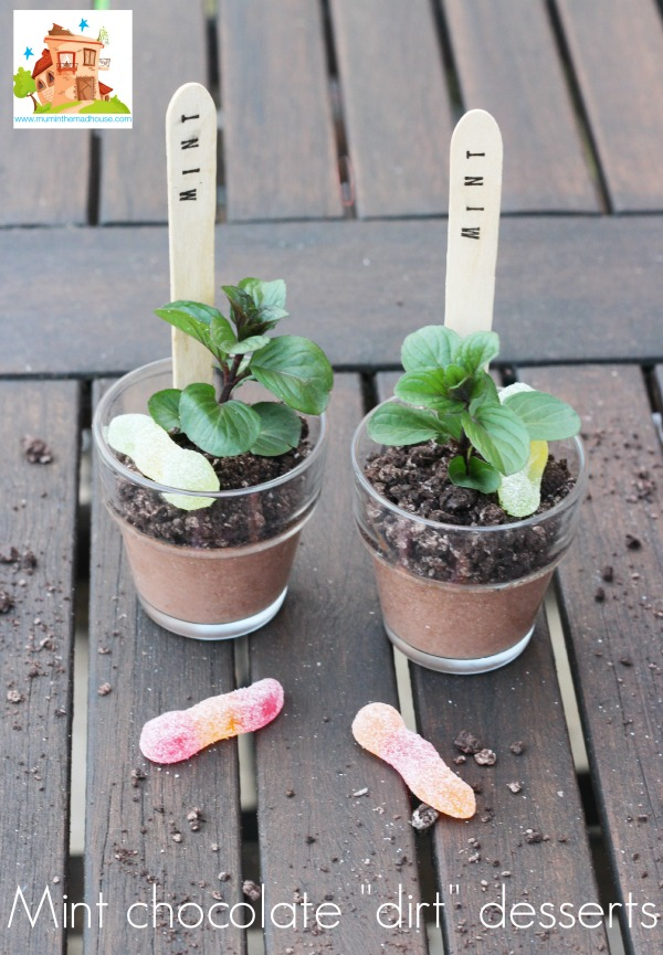 oreo mint chocolate pots7